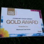 Our Gold Award for our show garden at the Chorley Flower Show
